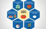 Томат анюта характеристика и описание сорта