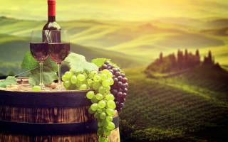 Сорта красных вин