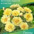 Сорта садовой брусники