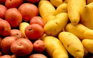 Сорта картофеля все по алфавиту